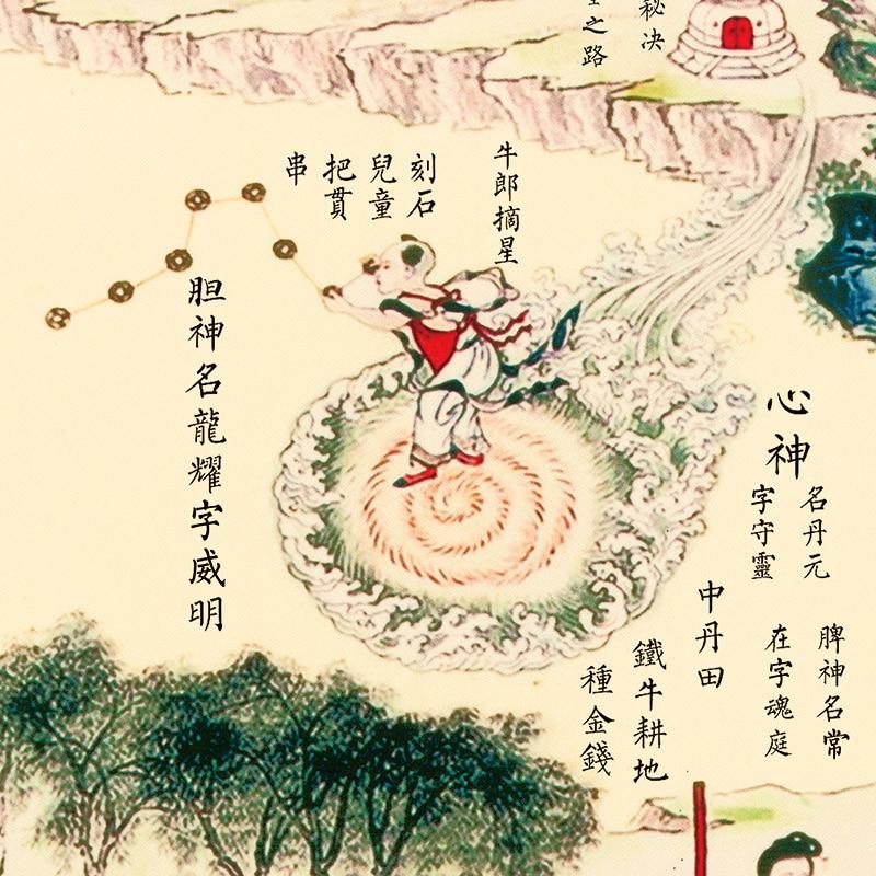 Intérieure Classique Photos Coloré Médecine Chinoise Culture Mur Photos Taoïste Soins de Santé Caractères et Peintures-in Massage et relaxation from Beauté & Santé    3