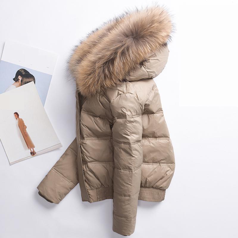 Ailegog 2019 Winter Women Real Raccoon Fur Collar White Duck Down Hooded Jacket Short Coats Female Slim Casual Down Outerwear