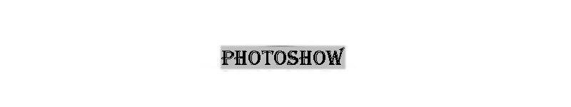 Tocona 12 шт./компл. в богемном стиле стрелки из античного серебра Слон, лиса, Лев, с принтом в виде пони резные животных кольца наборы для Для женщин ювелирные изделия 4676