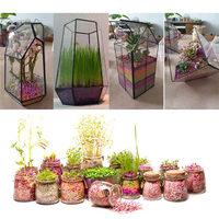 Garden Pallet Nursery Flowers Plant Plants Planting Growth Grow Nutritional Potting Soil Nutrient Pot Clay Tools
