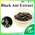 Anti-aging herbal extract Black ants P.E powder 0#capsule 500mg* 50pcs