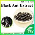Anti-envelhecimento à base de plantas extrato de formigas Pretas P.E pó 0 # cápsula 500 mg * 50 pcs