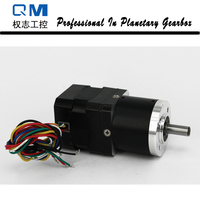 High Reliability Gear Brushless Dc Motor Planetary Gearbox Ratio 20 1 With NEMA 17 30W 24V