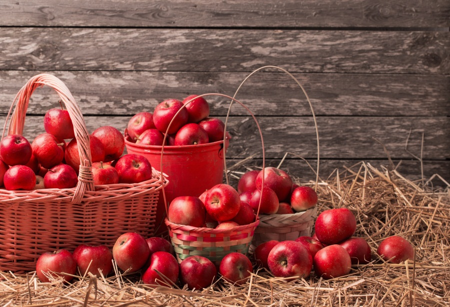 Laeacco Wooden Board Hay Bale Fruit Portrait Scene Photography Backgrounds Customized Photographic Backdrops For Photo Studio