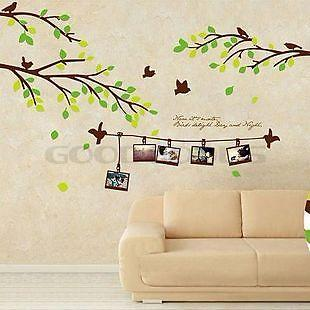 New 2015 DIY Wall Art Mural Home Decoration Family Tree Photo Frame Birds  Removable Wall Sticker Part 62