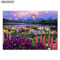 DRAWJOY пейзаж в рамке картина DIY картина маслом по номерам живопись и каллиграфический домашний Декор стены искусства GX21019 40x50 см