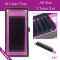 S&C 5tray All size,16rows/tray, eyelash extension,false eyelashes,nature eyelashes,silk lashes extension lash for free shipping