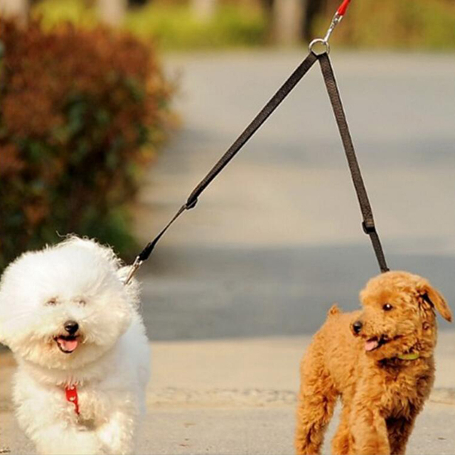 Nylon V Shape  Dual Coupler Dog Leash