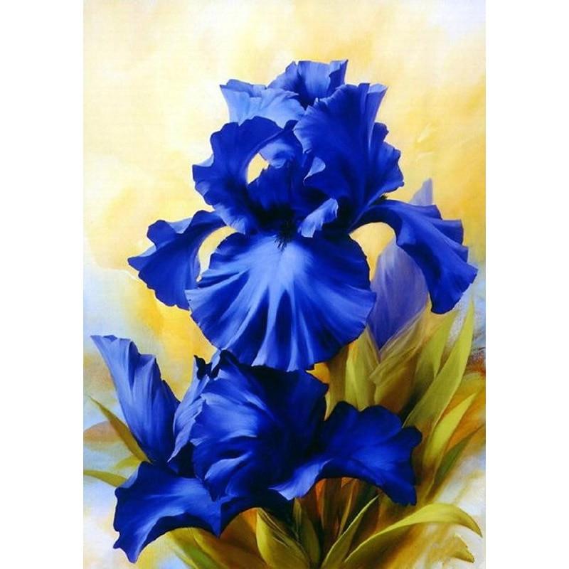 Картинки, открытка с цветами ирис