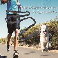 Guinzaglio da corsa per cani da compagnia corda 2 controllo manuale cane da jogging guinzaglio da passeggio con mani riflettenti animali domestici doppia elasticità corda per collare