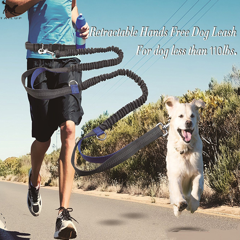 [TAILUP] Pet Dog Running Leash Rope with2 handles DogJoging Walking Leash with Reflective Hands free Pets Double Elasticity Rope
