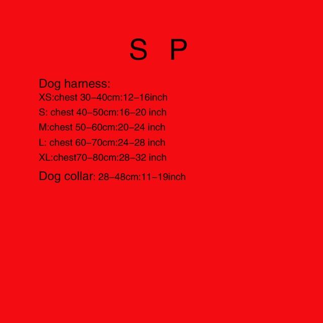 1-4 pet set 1 (Cablaggio) 2 (Cablaggio + Guinzaglio) 3 (cablaggio + Guinzaglio +