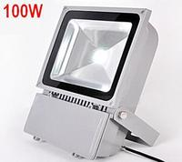 12V 100W LED Spotlight Floodlight Outdoor Floodlights LED Flood Light Lamp Waterproof Gardon Lawn Lamps Warm White Cold White
