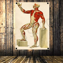 """THE HUMAN MUSCULAR SYSTEM"" Vintage Poster Banner Flag Tapestry HD Senior Art Cloth Painting Hospital Clinic Gym Decoration A16(China)"