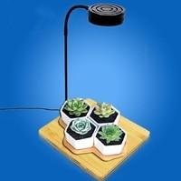 3W/5W/7W/9W Multifunction Succulents plant Fill light Micro landscape light Aquarium Light Fish Tank lamp