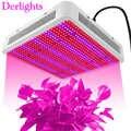 Crescer Caixa Crescer Led 800 W Plantas de Interior Lâmpadas LED Indoor Red White Blue UV IR para Hidroponia Crescer Tenda plantas de Flores