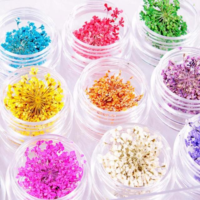 DIY Tips with Case Small Flowers Nails Tools Rhinestones Decorations Real Nail Dried Flowers Nail Art Decoration