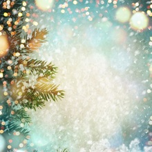 Laeacco Photography Backdrops Christmas Winter Snowflake Pine Polka Dots Bokeh Dreamy Baby Portrait For Photo Studio