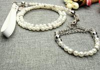 Luxury Silver Pearl Pet Collar Leash Set Dog Collar Dog Leash Pet Supplies Dog Collars Rhinestone