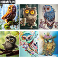Алмазная 5d-картина HOMFUN «животные, серия Совы», вышивка крестиком, полное покрытие, квадратные/круглые, домашний декор, подарок