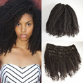 Afro Kinky Curly Clip in Extensions Natural Hair,100% Brazilian Virgin Hair Clip in Human Hair Extensions,7Pcs/set,Color 1B