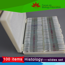 Life science histology Vertebrate Histology Identification Slide Set