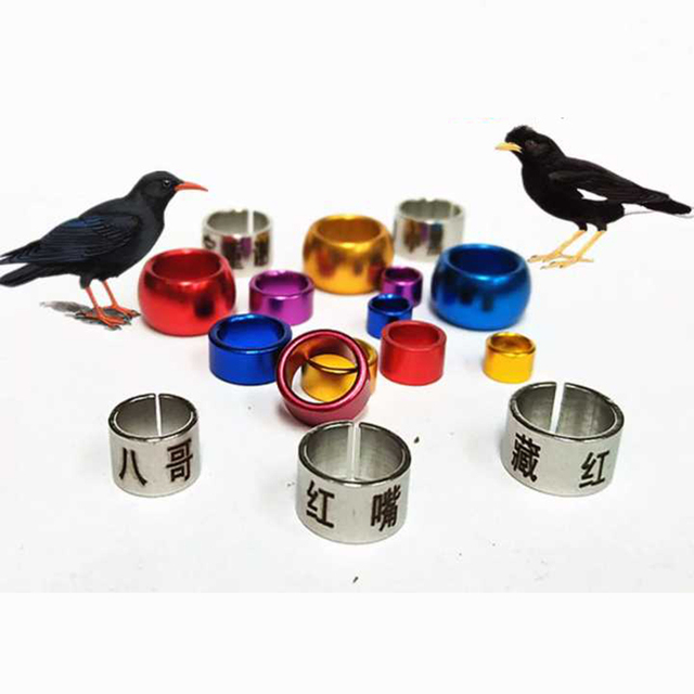US $28 0 |50 pcs aluminum pigeon foot ring birds ring canary love birds  budgerigar leg bands parrot pigeon ring Customized-in Bird Training from  Home
