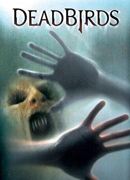 《索魂恶鸟》2004年美国恐怖,惊悚,西部电影在线观看