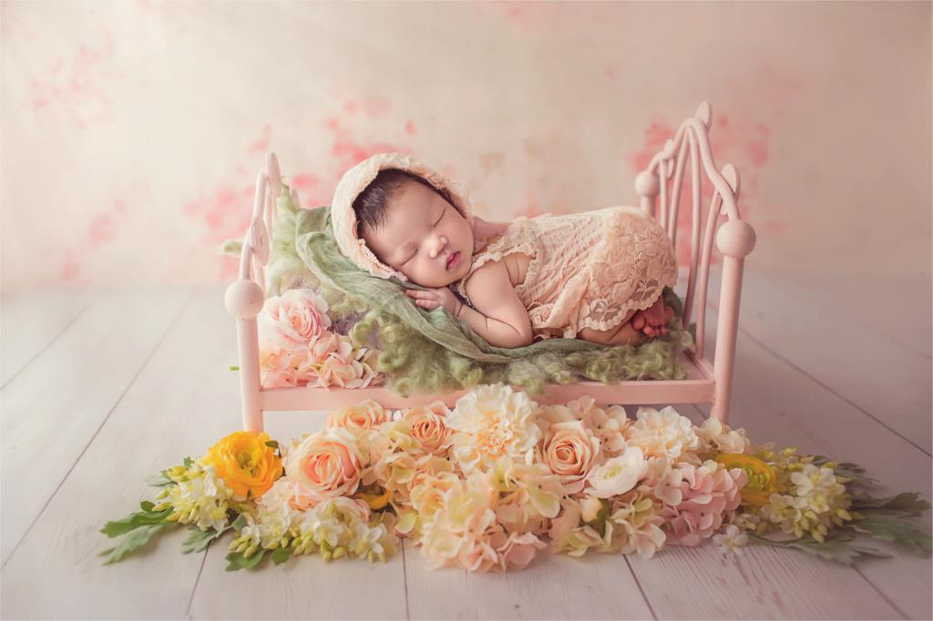 Fantasyland Props Wrought Iron Baby Princess Bed Baby Cute Bed Newborn Photography Props Accessories Studio
