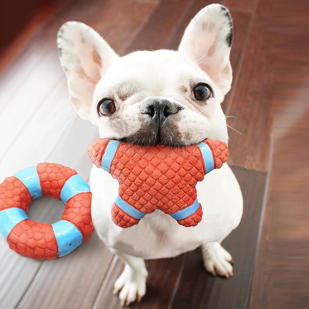 Resultado de imagen para french bulldog Hund mit Spielzeug spielen