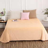 Simple Style Beige Solid Color Crystal Velvet Sheets Bedding Hotel 1 Pc Bed Sheet Home Textile King/Queen/Full 240x250cm Size