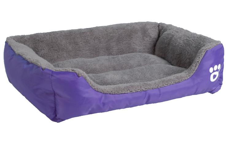 purple dog bed
