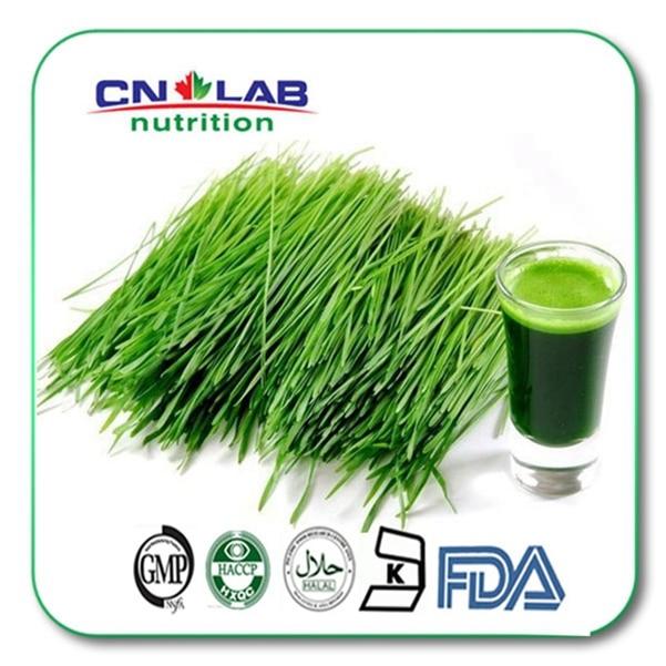ФОТО Free Shipping 1KG 2017 crop 100% organic alfalfa grass powder