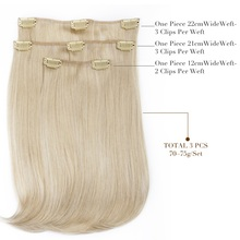 Straight Synthetic Clip in Hair Extensions