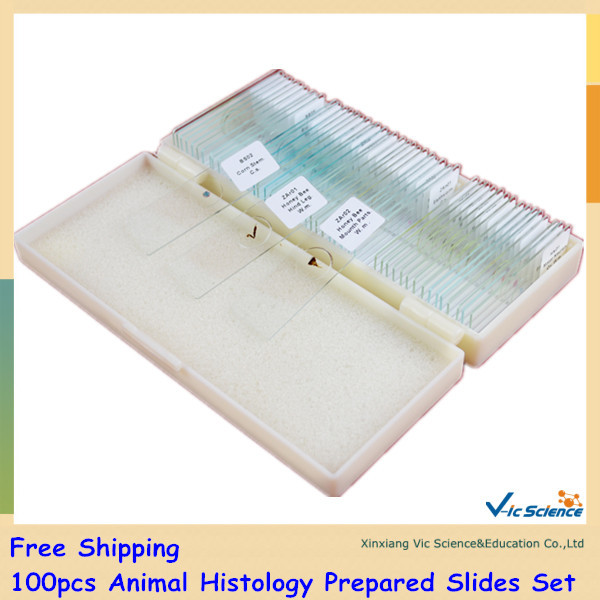 Free Shipping 100pcs Animal Histology Prepared Slides Set fixed set teaching resources university students study 78pieces medical parasite prepared microscope slides