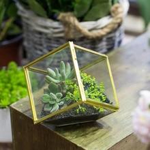 NCYP Geometric Clear Glass Desktop Succulent Plant Flower Pot Terrarium Handmade Pastoral Style Fern Moss Plant Glass Terrarium