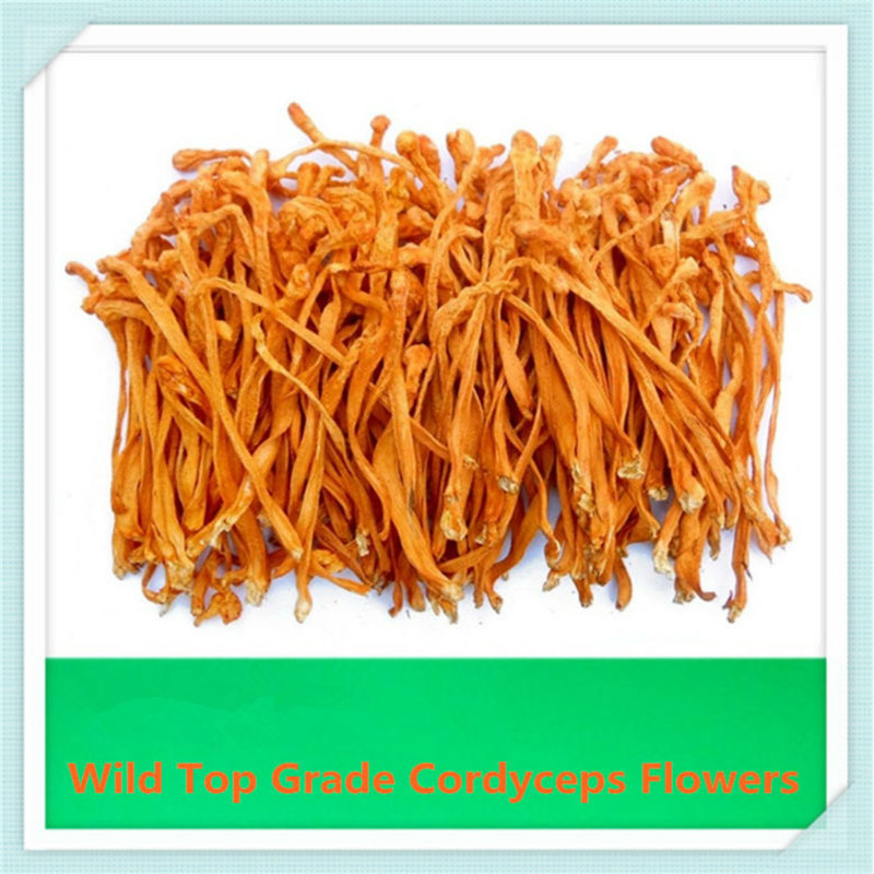 Makeup cordyceps Militaris Spend Delicious Soup Nutritional Fungus Food 100% Featured Genuine Inner Mongolia Cordyceps Flowers