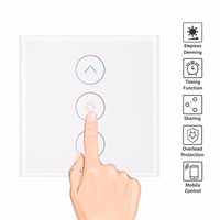 EU Smart Light Stepless Dimmer Wall Touch Remote Control WiFi Light Switch Work with Alexa Google Assistant smart home Tuya APP