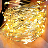 Warm White 30m 300 LED Outdoor Christmas Fairy Lights LED Copper Wire String Lights Starry Light Garland + Power Adapter