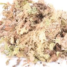 1 упаковка 12л садовое увлажняющее питание органическое удобрение Sphagnum сухой мох для орхидеи фаленопсис мусго Sphagnum