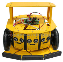 2WD Mobile Robot Kit 10004