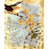 Frameless Pictures Diy Painting By Numbers Hand Painted On Canvas Decoration Painting Animal Good Luck Birds
