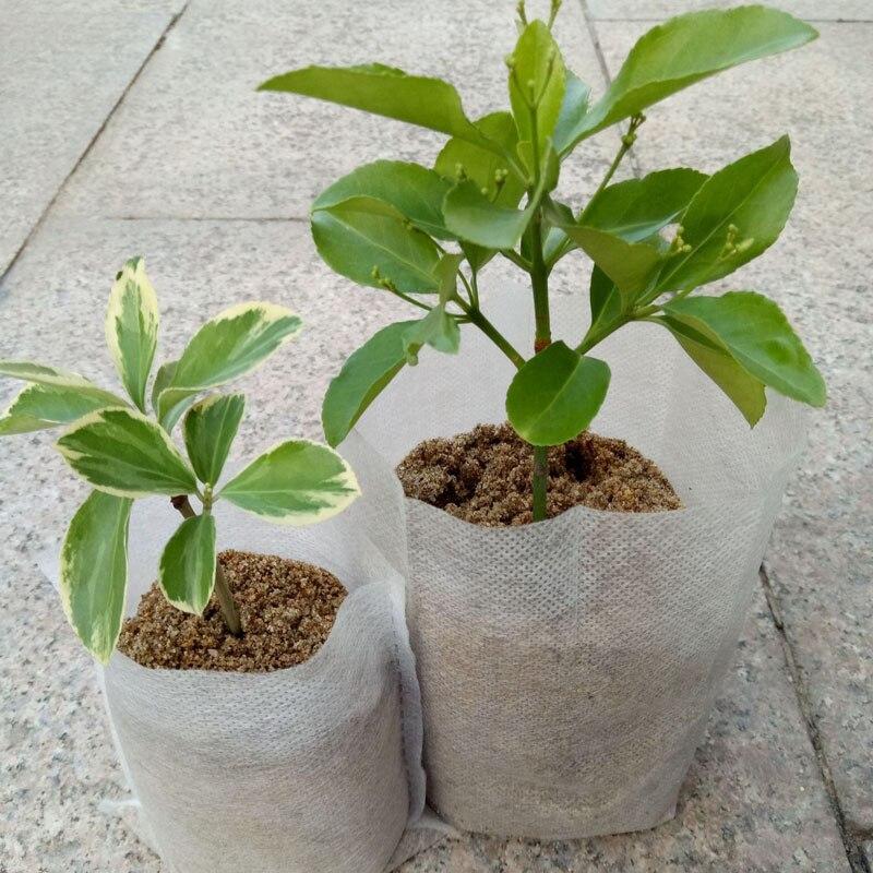 Planting Bag Degradable 100 Pcs Nursery Pots Seedling Non Woven Fabric Bags Garden Supplies Disposable Growth Bag