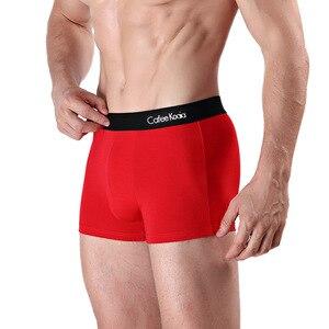 Image 4 - Sexy Boxers Ventilate Plus Size Boxers L XL XXL XXXL 4XL 2019 Panties Mens 4Pcs\lot Underwear Organic Natural Cotton Boxers Men