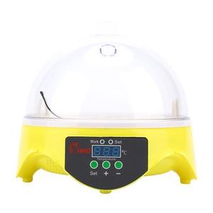 Image 3 - Digital 7 Eggs Incubator For Egg Broedmachine Chicken Duck Quail Birds Egg Hatcher Electronic Incubator Tools