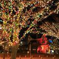 10/20 M 100 LED 110 V 220 V Colorido al aire libre LLEVÓ luces de la secuencia de Hadas de Navidad Luces de navidad de la boda decoración del partido 9 colores