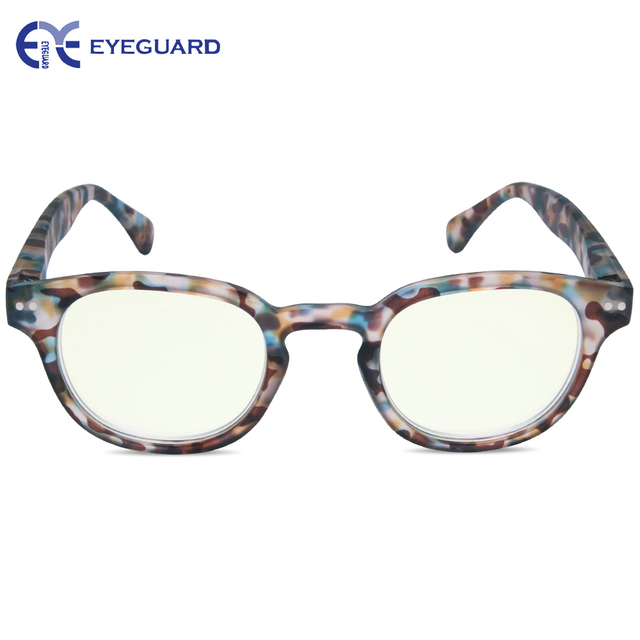 Computer Protect Glasses 2