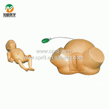 BIX-F8A Advanced Delivery Midwifery Childbirth Dystocia Teaching And Training Model  MQ113