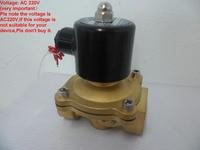 1 Inch DN25 Brass Pneumatic Electric Brass Solenoid Valve 2W250 25 DC12V DC24V AC110V Or AC220V