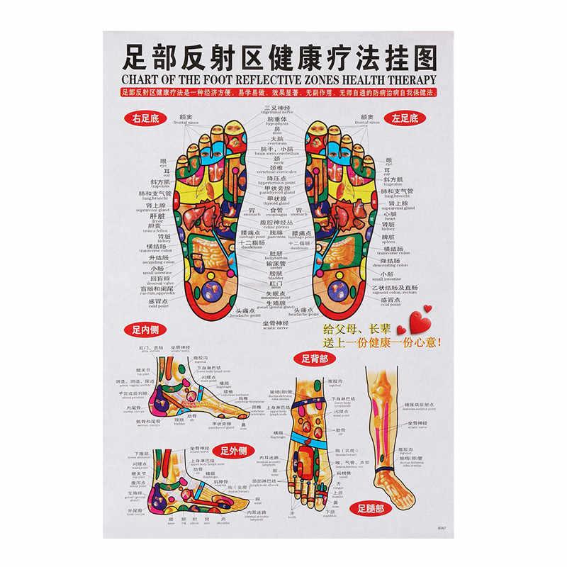 7 قطعة المجموعة الوخز بالإبر تدليك نقطة خريطة الصينية والإنجليزية الزوال العلاج بالابر نقاط الملصقات الرسم البياني جدار خريطة ل الطبية التدريس الوخز بالإبر Aliexpress